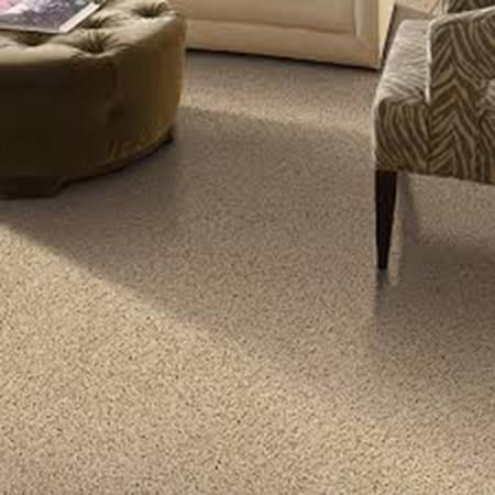 Wall To Carpet S In La, Living Room Carpet Cost