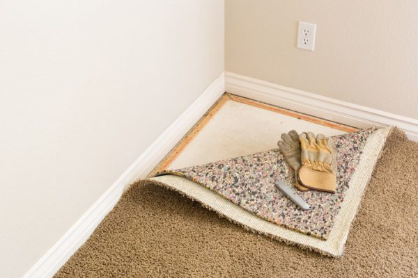 Best pure wool carpet prices in markets